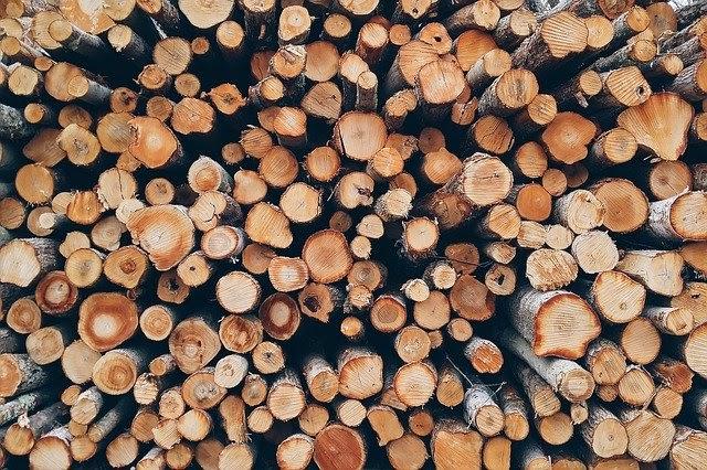 manutenção de telha de madeira